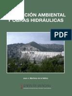 Evaluacion Ambiental y Obras Hidraulicas