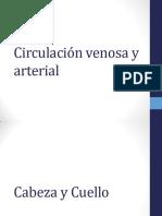 7B. Circulación Venosa y Arterial DEL CUERPO