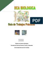 Guia Quimica Biologica-2009