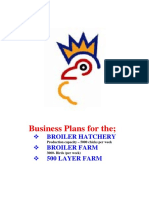 Business Plan Hachery