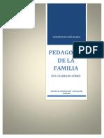 La Parentalidad Positiva Como Solución a Futuros Conflictos Entre Padres e Hijos
