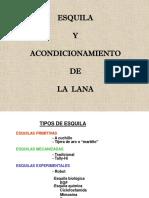 polca_ESQUILA_0