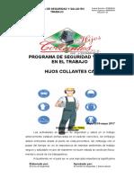 Programa de Seguridad y Salud en El Trabajo Revision Etapa 2 Medidas