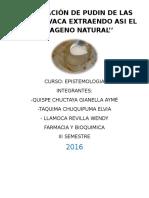 FABRICACIÓN-DE-PUDIN-DE-LAS-PATAS-DE-VACA-EXTRAENDO-ASI-EL-COLAGENO-NATURAL (2).docx