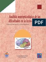 Analisis Neuropsicologico de La Dislexia