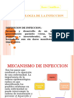 Fisiopatologia de Infeccion
