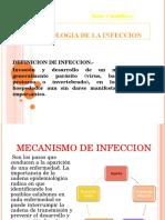 Fisiopatologia de Infeccion