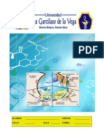 fisiopatologia-140914120236-phpapp01