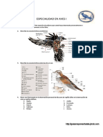 Aves- especialidad desarrollada