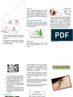 triptico zika.pdf