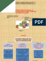0_0_prezentarea_lucrarii_de_grad.ppt