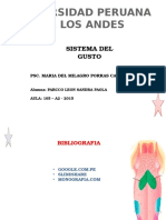 SISTEMA gusto SEN 04.pptx
