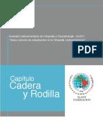 Capitulo Cadera y Rodilla