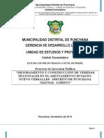 Pip Veredas Punchana-Formulacion