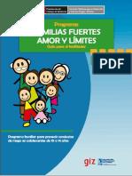 Guía Del Facilitador de FF
