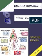 I Unidad Morfofisiologia III Completa Samuel Reyes