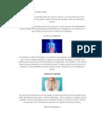 Jengibre Usos Medicinales