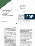 Puigross.pdf