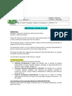 4º guia anatomía.doc