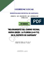 Perfil de Proyecto de Inversión Publica 2010 Casapia
