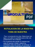 2 urocultivo