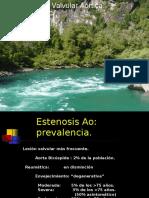 Enfermedad Valvular Aortica Mercadal (1)