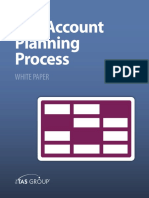 The Account Planning Process