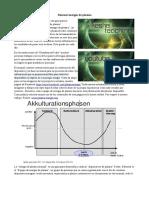 Manual reactor de plasma Magrav (Traducido Del Alemán)
