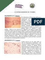 Practica_Generalidades_de_los_Tumores.pdf