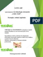 Sergiu Cristian Gavriloaie - Vertiqual presentation.pdf