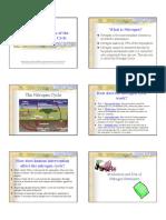 Nitrogen Cycle.pdf