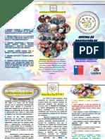 Tríptico NUEVO OPD.-.pdf