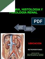 1 Anatomia e histologia renal UNT.pdf
