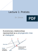 Lecture 1 Protists