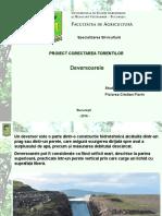 Proiect Corectarea Torentilor Piciorea Cristian Florin.pdf.ppt