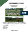 Plan Aaup-Engorde de Ganado Vacuno-mdd (1)