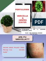 Penyuluhan Varicella & Herpes Zoster