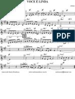 VOCE E LINDA.pdf