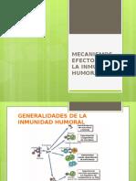 Mecanismos Efectores de La Inmunidad Humoral
