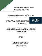 El Aparato Reproductor y La Psicologia
