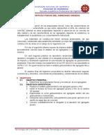 estudio de AGREGADOS para el concreto.docx