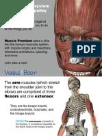 VB_Muscle_Premium_Preview_010714.pdf