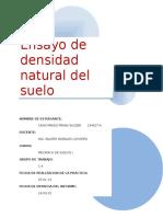 Ensayo-de-densidad-natural-del-suelo.docx