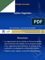 vegetales.pdf