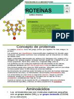 Proteinas Equipo 1 Quimica Organica