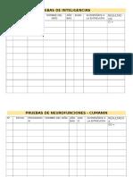 Registros de Pruebas