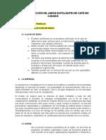 Creación-de-un-producto-trabajo-final (1).docx