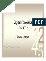 09 Binary Analysis.pdf