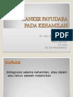 Carcinoma Payudara Pd Kehamilan Ppt