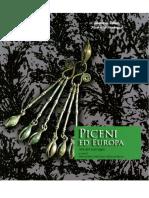 376751.Blecic Piceni 2007 PDF
